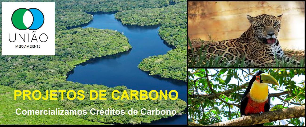 comercializamos-creditos-de-carbono