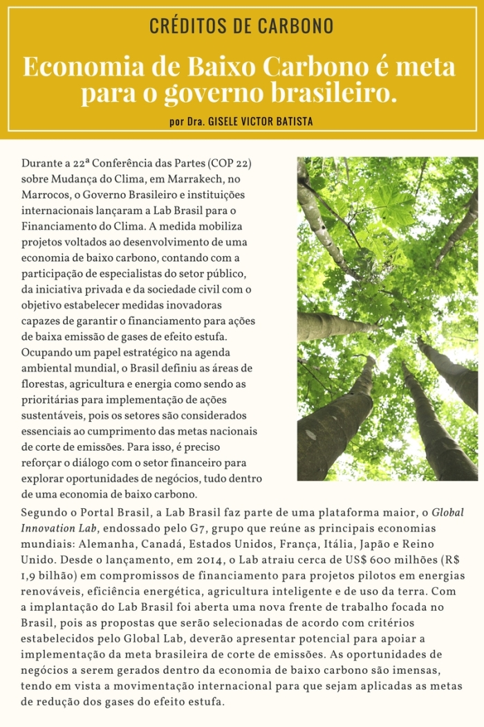 projeto-de-carbono-economia-de-baixo-carbono-e-meta-para-o-governo-brasileiro-1