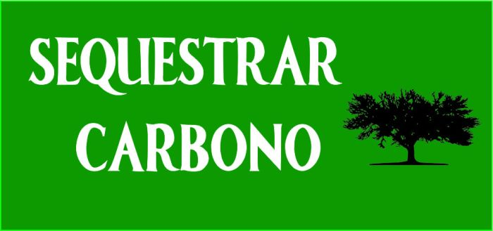sequestrar-carbono_logo_final-2
