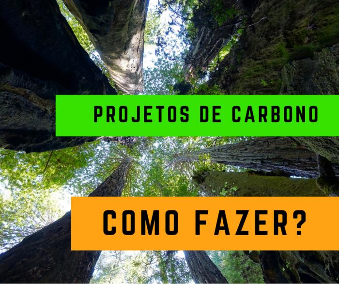 como-fazer-projeto-de-carbono