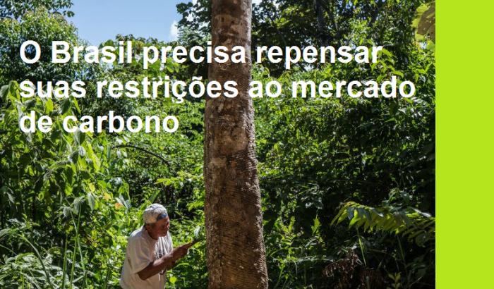 o-brasil-precisa-repensar-suas-restricoes-ao-mercado-de-carbono
