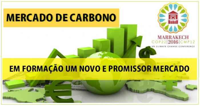 mercado-de-carbono-em-formacao