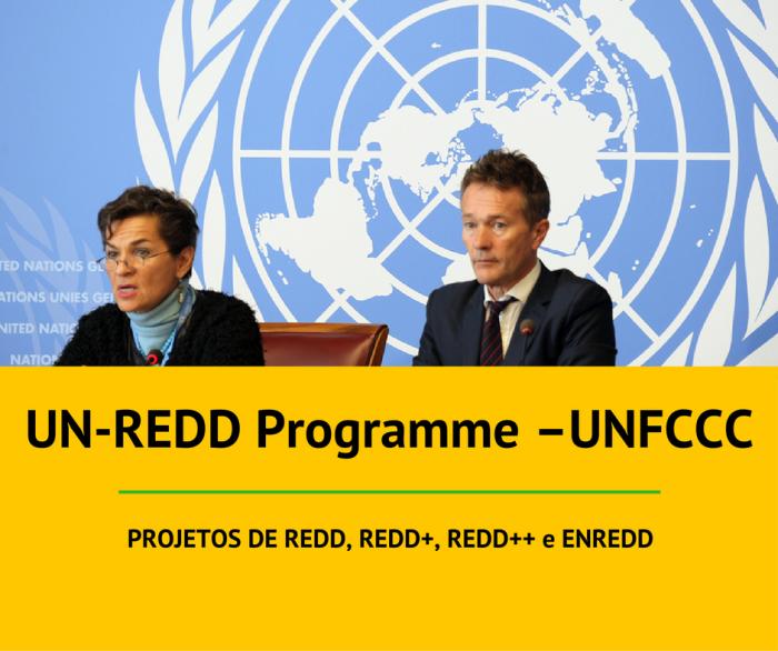 un-redd-programe-unfccc-3