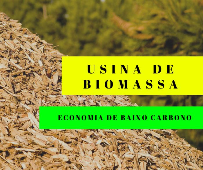 biomassa BNDES